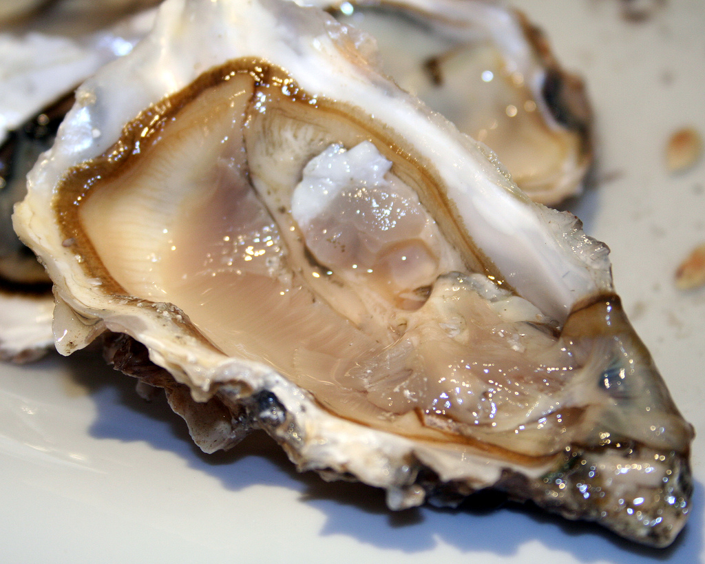 how to open and eat live oysters